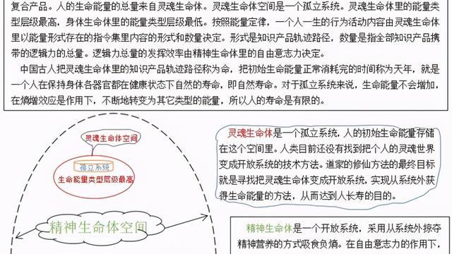 赵文银:命的技术本质是生命体精神世界里的知识轨迹路径