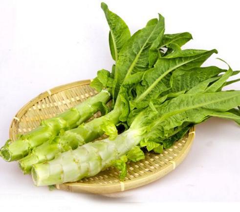 """莴苣图片,春天的""""千金菜""""莴苣很多人讨厌吃,但这3类人身体很需要它"""