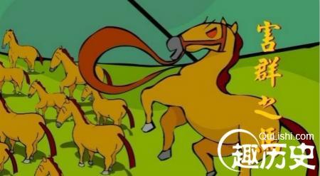 马的成语有哪些,成语害群之马的本意:只是改掉马的一些坏习惯