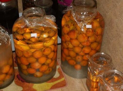 杏子的吃法,杏子泡酒要去核吗 教你杏子泡酒的做法