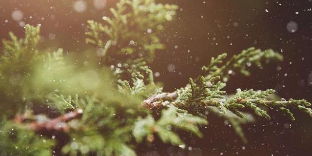 描写雪的句子,形容天气冷的唯美句子 形容天气寒冷的好句子