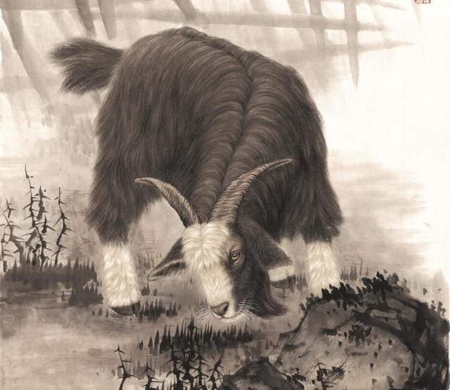 属羊和属猪,善良过头的这三个生肖,总会被别人欺负
