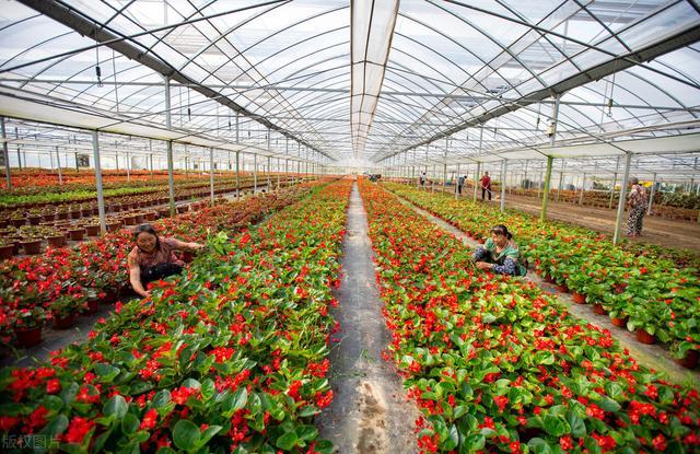 农业项目有哪些,总投资188亿!这23个现代农业项目,到底怎么样?