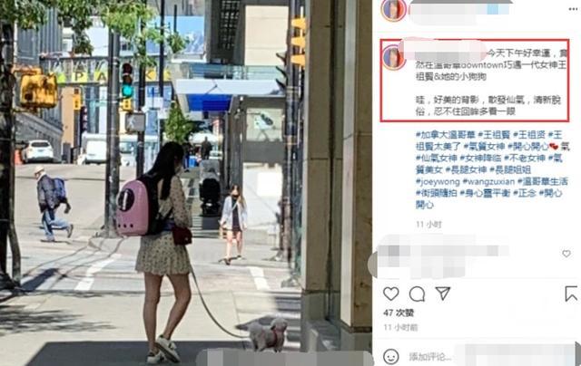 54岁王祖贤街头遛狗被偶遇!穿短裙小腿纤细,一头黑发仙气十足 全球新闻风头榜 第1张