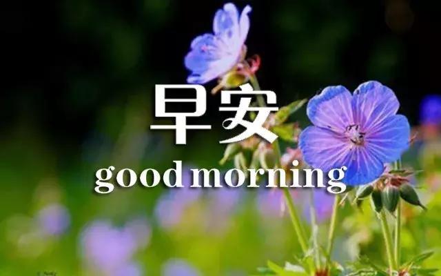 祝福工作祝福语,早上好,祝你工作顺利没烦恼!生活美满心情好!