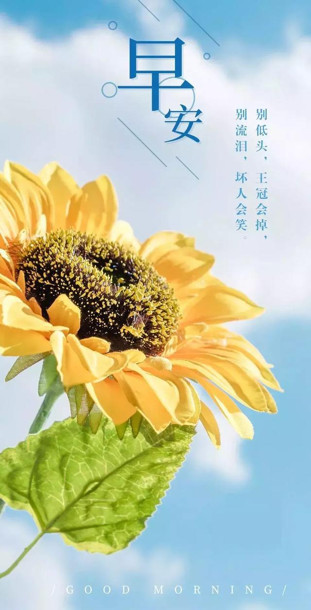 带的的句子,微信早安心语图片带字阳光句子(07-10)