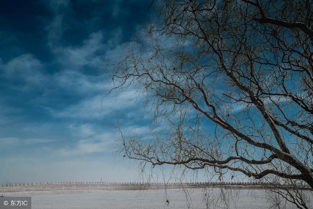 我字的诗,一个独字,100句诗,人间多少寂寞?独上高楼望尽天涯路
