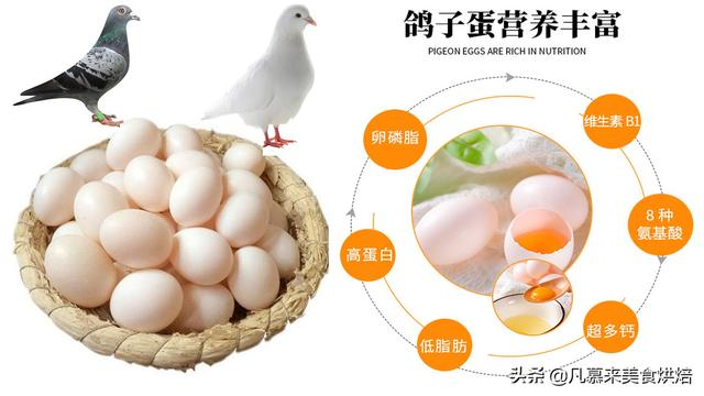 鸽子蛋的吃法,《红楼梦》刘姥姥也吃过,鸽子蛋的最佳吃法,7种吃法哪种最好吃