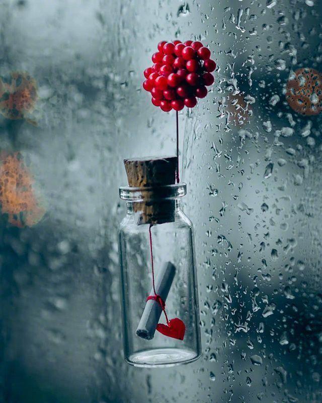 下雨天的心情经典句子,下雨天的心情随笔句子,句句让人心疼!