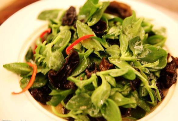田七叶的吃法,美食推荐: 凉拌田七叶, 香辣啤酒鸡, 爆炒里脊肉, 炒春笋做法