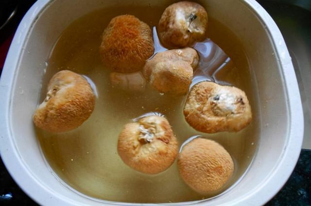 干菇的吃法,孝知味猴头菇怎么吃,蒸炒煮炖皆可