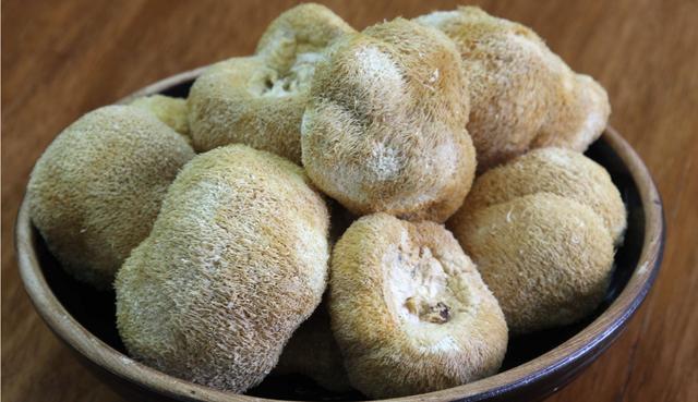 猴头菇的做法,猴头菇5种最好吃的做法,每种都营养又美味,看看你喜欢哪种?
