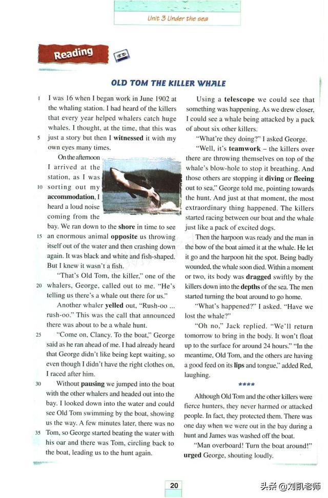 停课不停学:随身课本送给大家人教版英语选修七Unit 3精讲