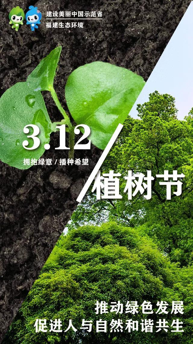 3月12日是什么节日,美丽中国 我是行动者 | 3.12植树节 让我们拥抱绿意、播种希望