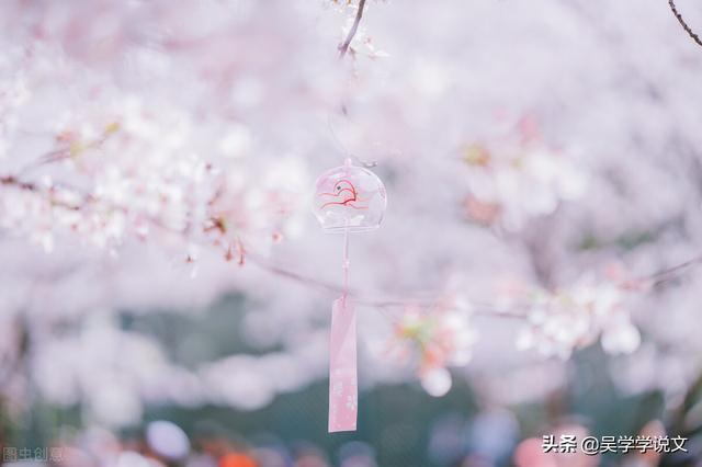 描写春天的优美短句,20句最美春景诗词,愿世间美好与你环环相扣