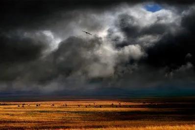 六个字的诗,明朝状元康海一首六言绝句诗《冬》,隆冬景象,别具韵味。