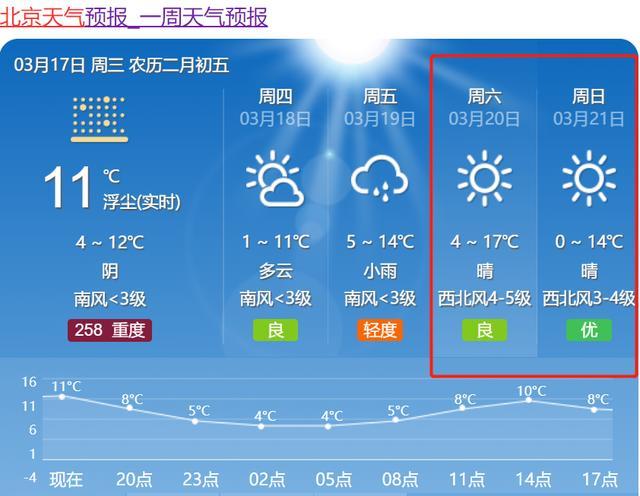 樱花的寓意,探访北京小众樱花地,我保证好几种樱花你都没见过