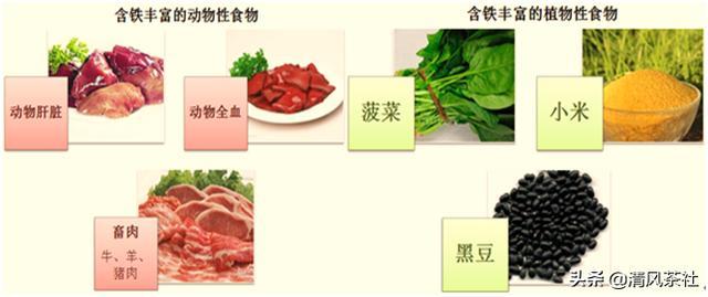 含铁的食物有哪些,要想美就得先补铁,哪些食物富含铁元素呢?