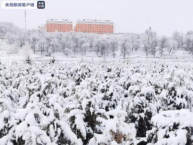 注意!甘肃发布暴雪黄色预警 部分交通受影响