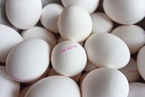鸡内金的吃法,鸡蛋配它吃,是男人的肾宝,女人的补中益气丸!