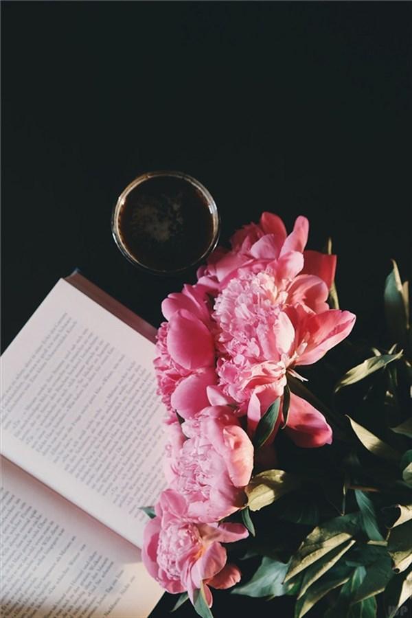表达爱的句子,关于爱情的20个句子,精辟现实,让人沉思!