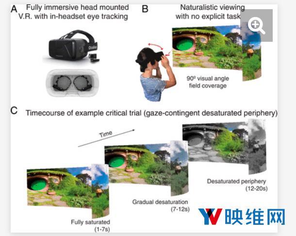 vR与色,研究员用VR探索人眼对色彩的感知,外围视场几乎被人眼忽略