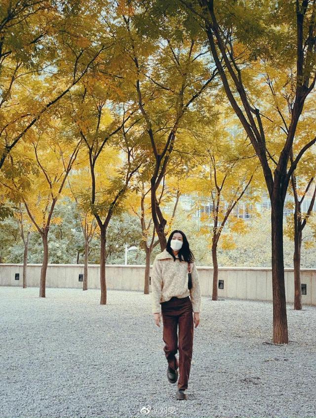 """刘雯图片,讲真的 刘雯的9宫格秋游照,是一本行走的""""种草合集""""吧?"""