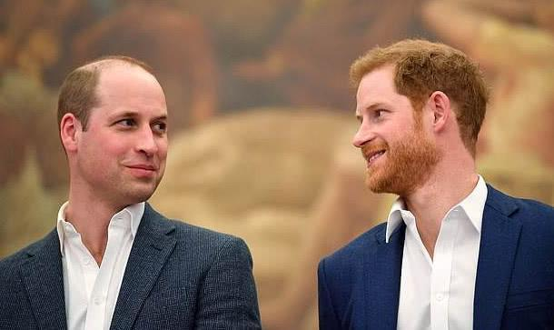 威廉王子:我们不是种族主义者家庭,还没和哈里交谈过 全球新闻风头榜 第1张