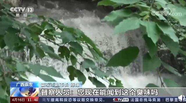 公开通报!督察人员将广西一副市长带到居民家旁排污口:能闻到吗? 全球新闻风头榜 第2张