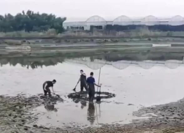 一声巨响!浙江嘉兴上空掉下不明物体,挖了1.5米深还没找到,当地已开始调查 全球新闻风头榜 第3张