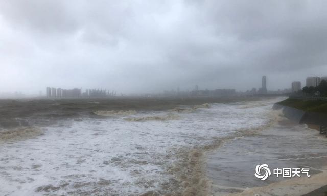 """近5年来影响海南的最强台风""""圆规""""致当地海水倒灌大树倒塌 全球新闻风头榜 第4张"""