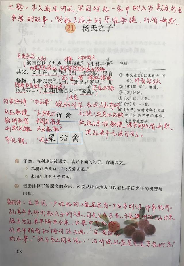 五年级语文下册,21课《杨氏之子》课堂笔记及全文解析