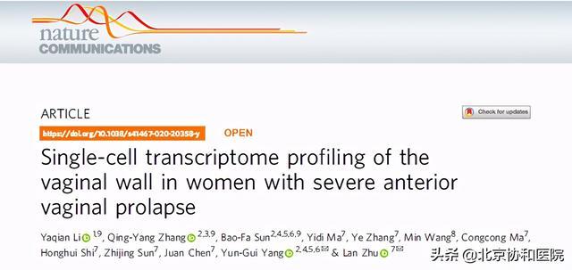 阴道图片,重磅 | 协和朱兰团队绘制女性阴道前壁脱垂细胞图谱