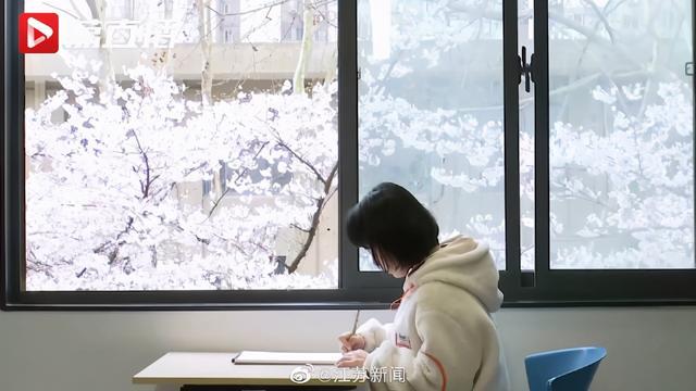 动漫,樱花不输武大,动漫场景完美重现!网友:又一座别人家的学校