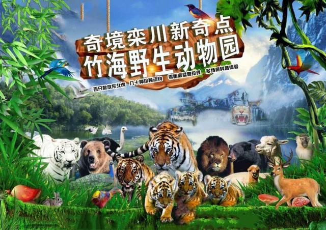 洛阳旅游景点大全景点排名榜,洛阳当地人旅游必去三大景点,景色漂亮不要门票,适合亲子出游