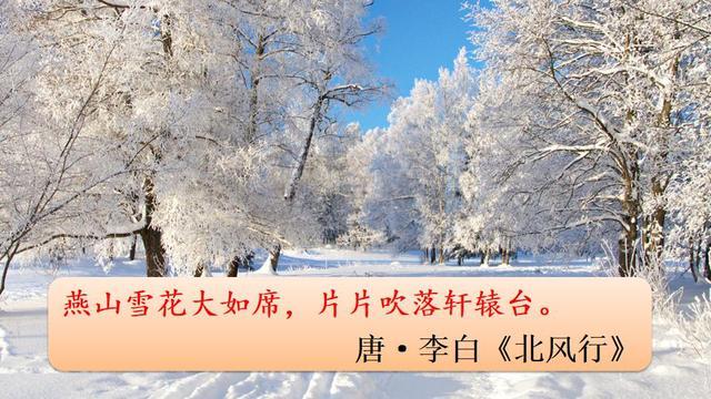 初中九年级语文上册第1课 沁园春·雪