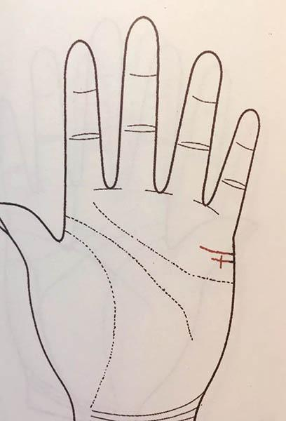 手掌解析运势图婚姻(手掌纹路运势解析)-第8张图片-天下生肖网