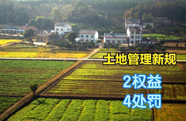 """土地管理新规:""""2权益"""",""""4处罚"""",9月始实走,农民请记牢"""
