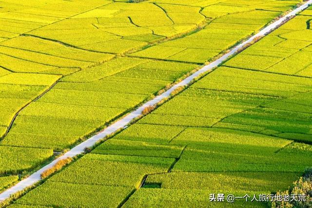 """""""2021中国最美乡下""""top10揭晓!个个是宝藏,提一个就往散心吧"""