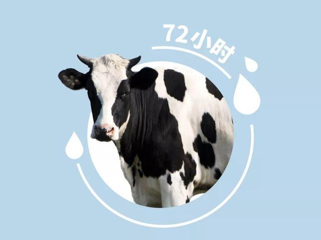 美国原装进口,天然牛初乳拯救了无数犬猫——添赐力来了