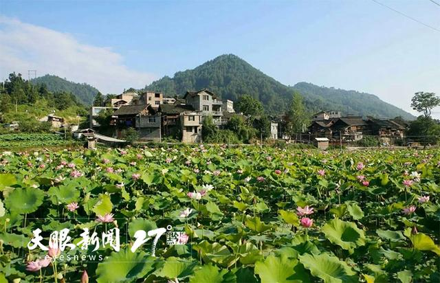 避暑度假到贵州   乡村旅游大提质:创新融合培育多元业态
