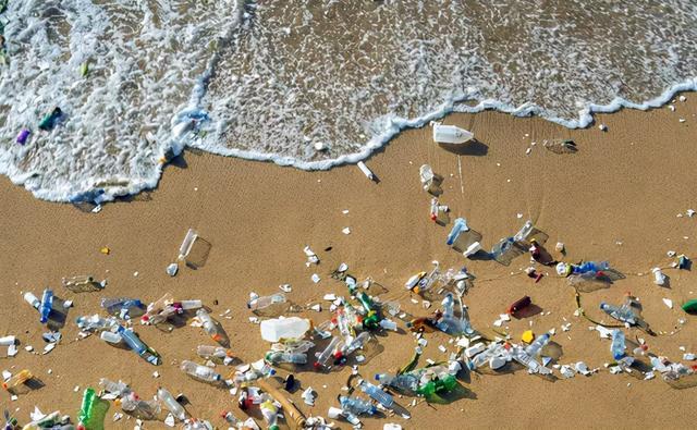 澳洲酸奶盖不能舔! 超七成包装含有毒物质! 饮料瓶, 咖啡杯盖也一样