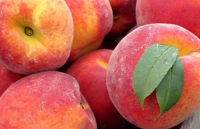 坐月子吃桃子行吗