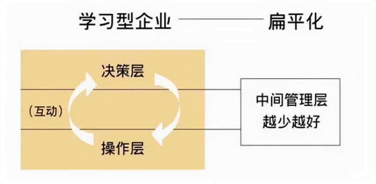 小微企业完美组织架构图和职责分享