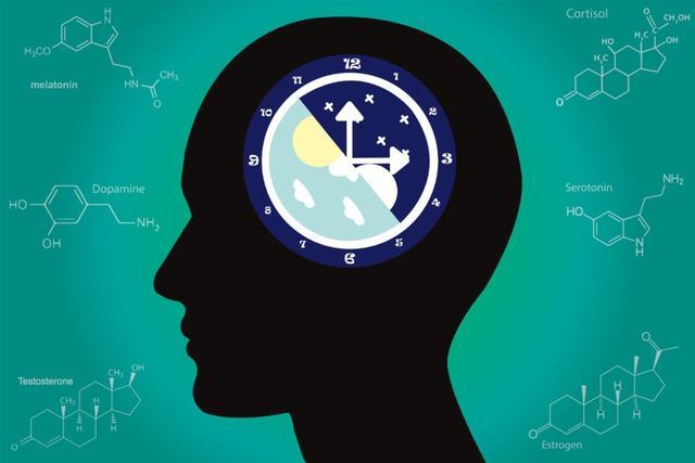 """盘点和生物钟有关系的8个""""冷""""知识"""