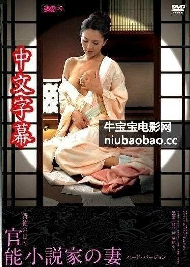 官能小说家之妻:偷情每一天影片剧照1