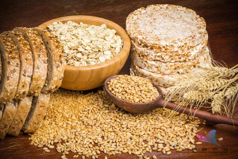 每天的主食,究竟吃些什么最健康?最需要关注的是…