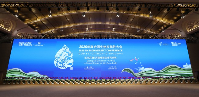 "COP15大会盛大启幕 一起来聊聊昆明这座""向往之城"""